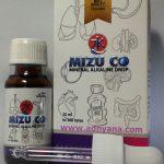 Apakah yang dimaksud dengan Mizu-co|Mizuco?